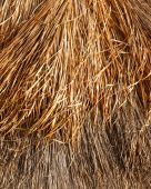 Thatched roof background or texture — Stock Photo