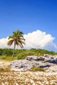 Playa del carmen beach, mexiko — Stockfoto