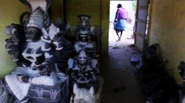 Statues of Hindu gods — Stock Video