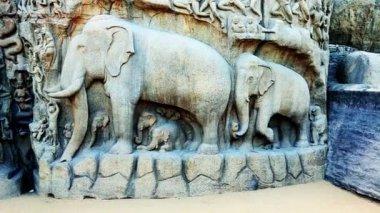 Rock sculptures in Pancha Rathas — Stock Video