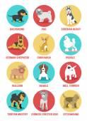 Vector dogs icon set — Stock Vector