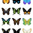 Vector butterflies icon set — Stock Vector #64907549