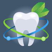 Dentistry vector illustration — Stock Vector
