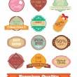 Vector vintage badges, stickers, ribbons, banners and labels. Creative graphic design illustrations. Isolated on white background — Stock Vector #69630201
