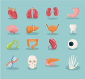 Vector internal organs cartoon icon set — Vetor de Stock