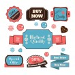 Vector vintage badges, stickers, ribbons, banners and labels. Creative graphic design illustrations. Isolated on white background — Stock Vector #70606005