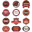 Vector vintage badges, stickers, ribbons, banners and labels. Creative graphic design illustrations. Isolated on white background — Stock Vector #70606009