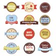 Vector vintage badges, stickers, ribbons, banners and labels. Creative graphic design illustrations. Isolated on white background — Stock Vector #70606011