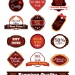 Vector vintage badges, stickers, ribbons, banners and labels. Creative graphic design illustrations. Isolated on white background — Stock Vector #70606013
