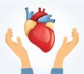 Vector heart in hands. Flat illustration — Stock Vector