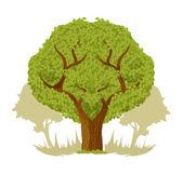 Vectorillustratie grote boom platte — Stockvector