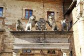 Montepulciano — Stock Photo