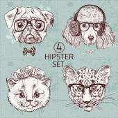 Hipster animal set with glasses — Vector de stock