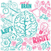 Left and right brain functions — Stock Vector