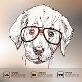 Hipster puppy with glasses — Stock Vector