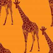 Illustration of a giraffe — Stock Vector