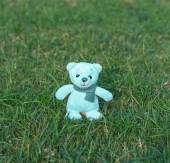TEDDY BEAR with scarf on the grass — Stock Photo
