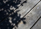 Tree shadow on the wood Background — Stock Photo