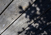 Tree shadow on the wood Background — Foto de Stock