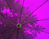 Under a purple Oriental Umbrella with abstract leaf — Stock fotografie