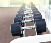 Rows of dumbbells in the fitness room — Stock Photo