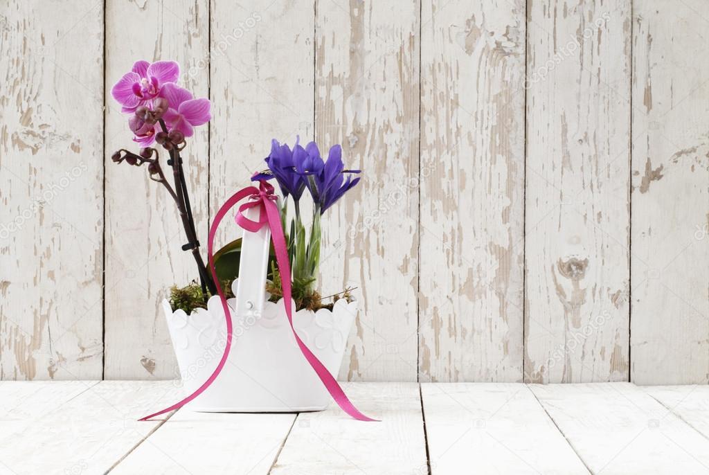 Flores primavera, iris y orquídeas en canasta de madera blanco \u2014 Fotos de Stock