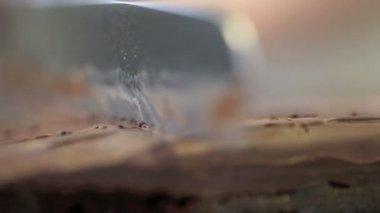Hands confectioner portioning sacher cake — Stock Video