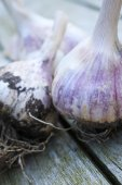 Fresh harvested garlic bulbs on wooden background — Stock Photo