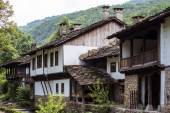 Traditional houses in east Europe — Stock Photo