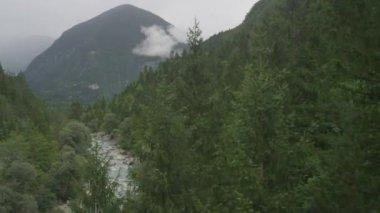 River running through mountain forest — ストックビデオ