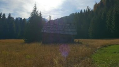 Old hut on a mountain forest glade — Stock Video