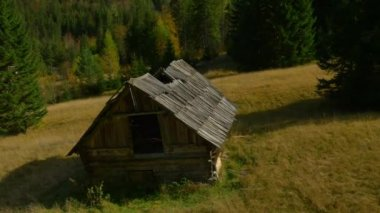 Old shepherd's hut on glade — Stock Video