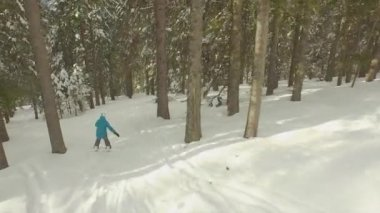 Female snowboarder riding through the forest — Stockvideo