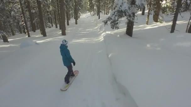 Female snowboarder snowboarding through the forest — Vidéo