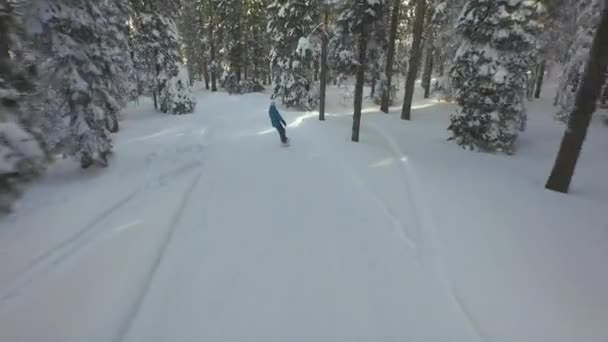 Snowboarding on the snowy forest path — Vidéo
