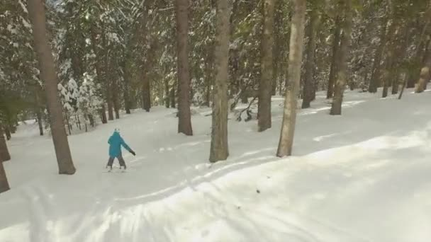 Female snowboarder riding through the forest — Vidéo