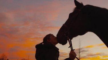 SLOW MOTION: Smiling woman kissing and petting her horse — Stock Video