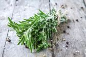 A bunch of fresh rosemary — Stock Photo
