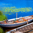 Two old fishing wooden rowboats — Stock Photo #55152441