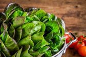 Fresh green organic lettuce with tomatoes in a colander closeup — Stock Photo