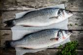 Two raw fresh seabass with thyme — Stock Photo