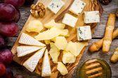 Cheese plate: Camembert cheese, blue cheese closeup, bread sticks, walnuts, honey, grapes — Stock Photo