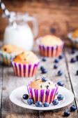 Homemade blueberry muffin with milk — Stock Photo