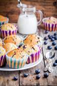Homemade blueberry muffins with milk — Stock Photo