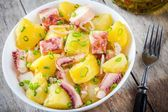 Italian food: salad with octopus, potatoes and onions — Stock Photo