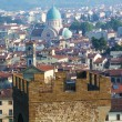 View of Florence from the surrounding hills, Italy — Stock Photo #52427891