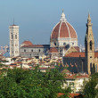 The cathedral of Florence from the surrounding hills, Italy — Stock Photo #52427911
