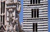 Detail of Siena Cathedral in Tuscany, Italy — Stock Photo