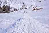 Walk in the snow — Stok fotoğraf