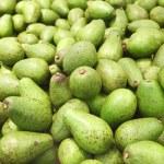 Avocado — Stock Photo #54828629